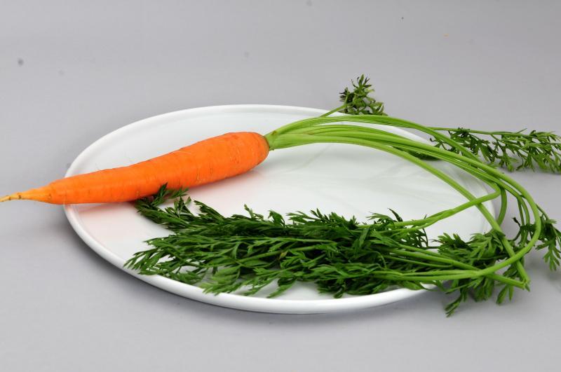 Carrot in het Natuurwoordenboek
